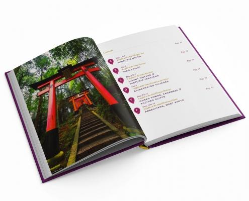japan daily guidebook travel